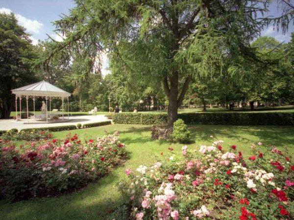 Kurpark Sommer