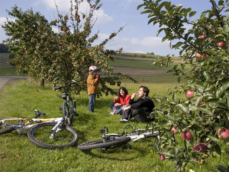Fahrrad, Familie, Apfelbaum, Pause, Entspannung, Bad Steben, Ausflug, Arrangement, Pauschale