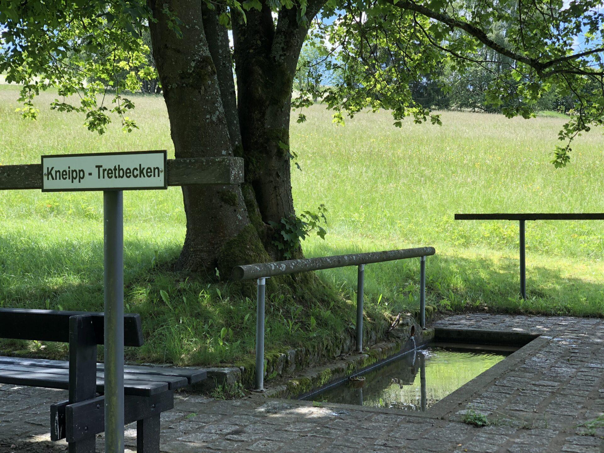 Kneippbecken im grünen an der alten Übungswiese in Bad Steben