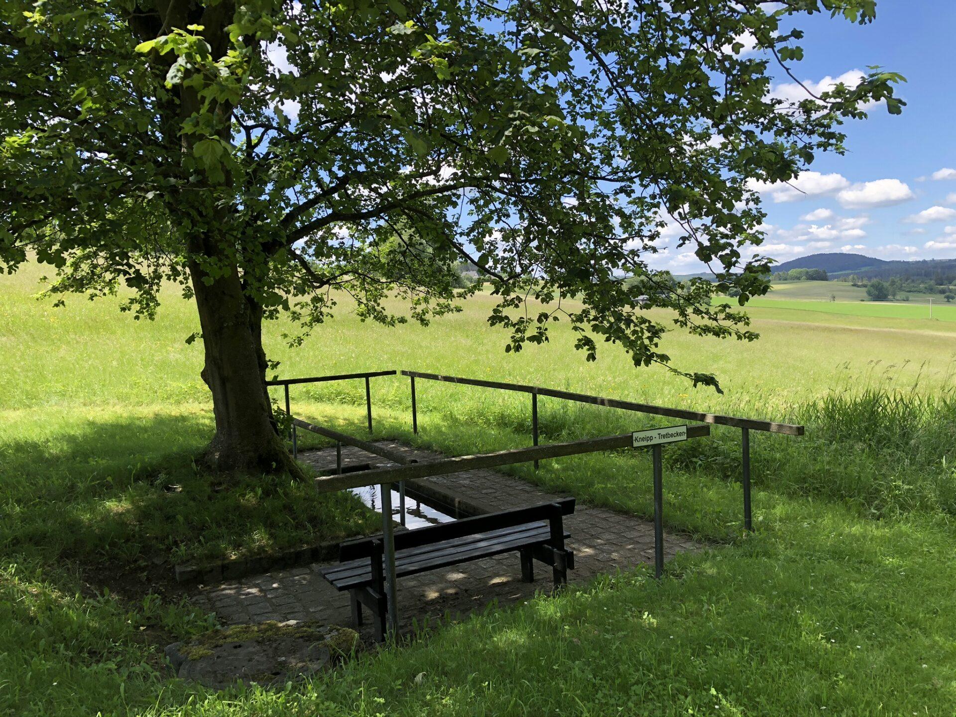 Kneippbecken am Wanderweg Mordlau und alte Sprungschanze Bad steben