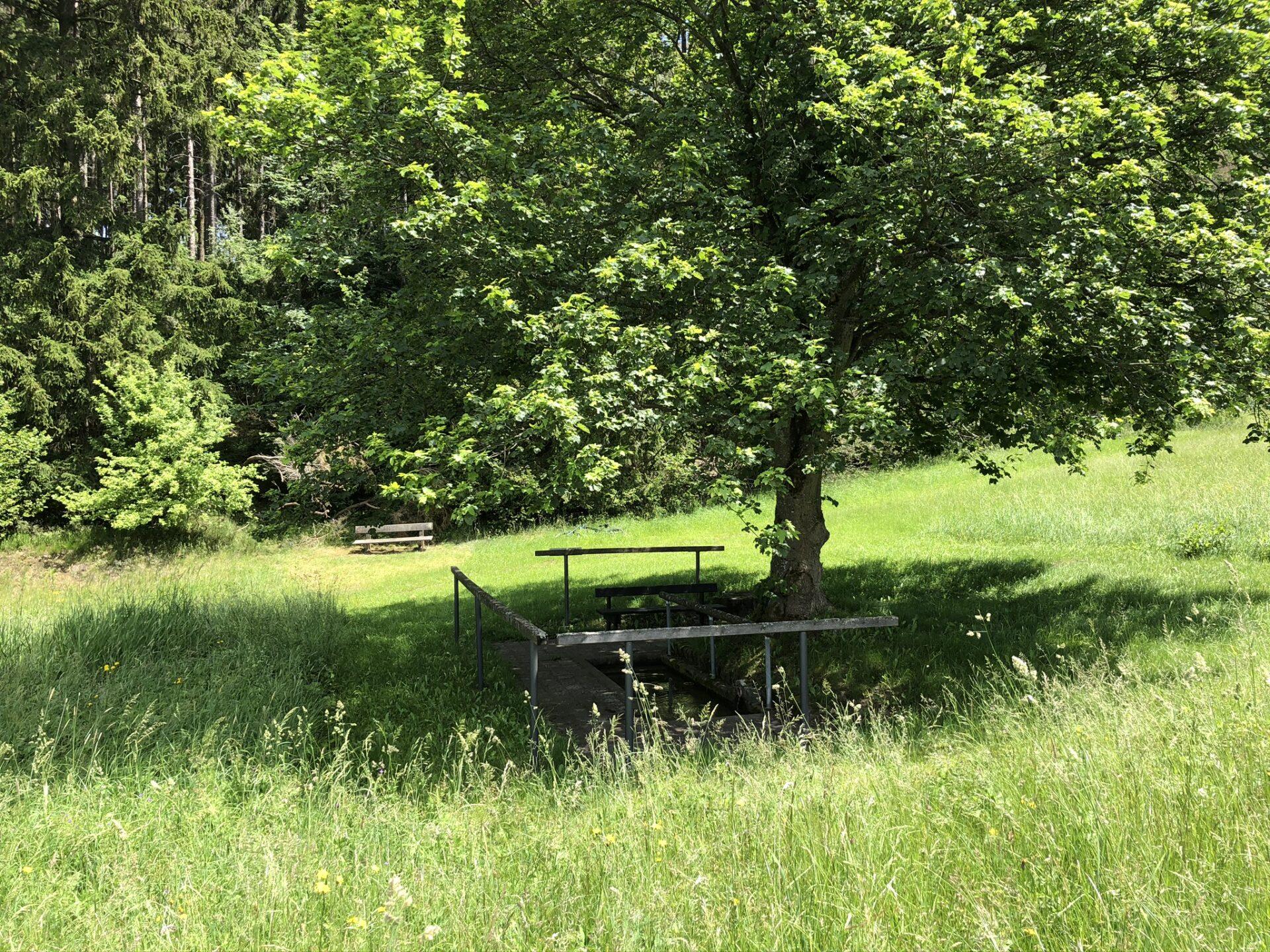 Kneippbecken an der alten Sprungschanze Bad steben